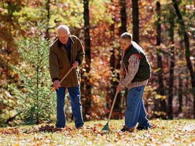 Позбуваємося опалого листя