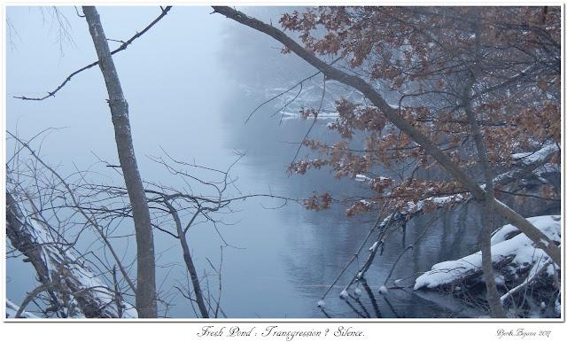 Fresh Pond: Transgression? Silence.