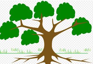 Pengertian dan Pengantar Taksonomi Tumbuhan