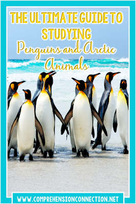 Penguins are amazing, but studying them is even more exciting. In this post, you'll find lots of fun penguin themed ideas for use in your classroom.