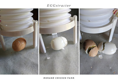 EGGstractor review using farm fresh eggs