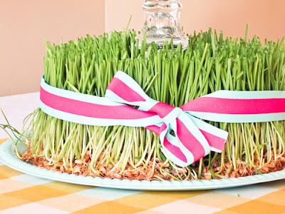 grass2 Easter Wheat Grass 8