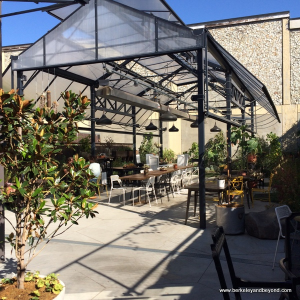 back patio at Mission Heirloom Cafe in Berkeley, California