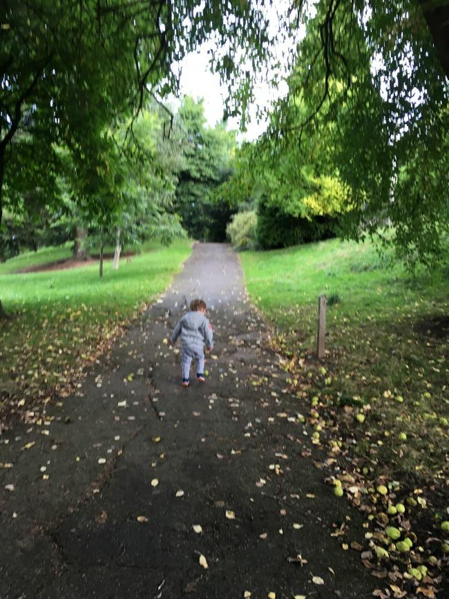 toddler-picking-up-fruit-in-park