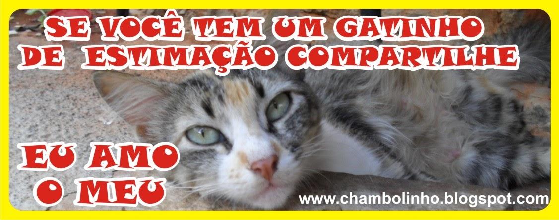 Frases Com Animais De Estimação Para Facebook: Frase Animal De Estimação Pra Facebook
