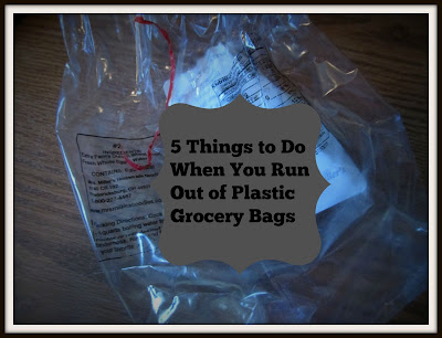 5 Things to Do When You Run Out of Plastic Grocery Bags-Vickie's Kitchen and Garden