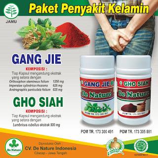paket obat herbal untuk kencing nanah gonore