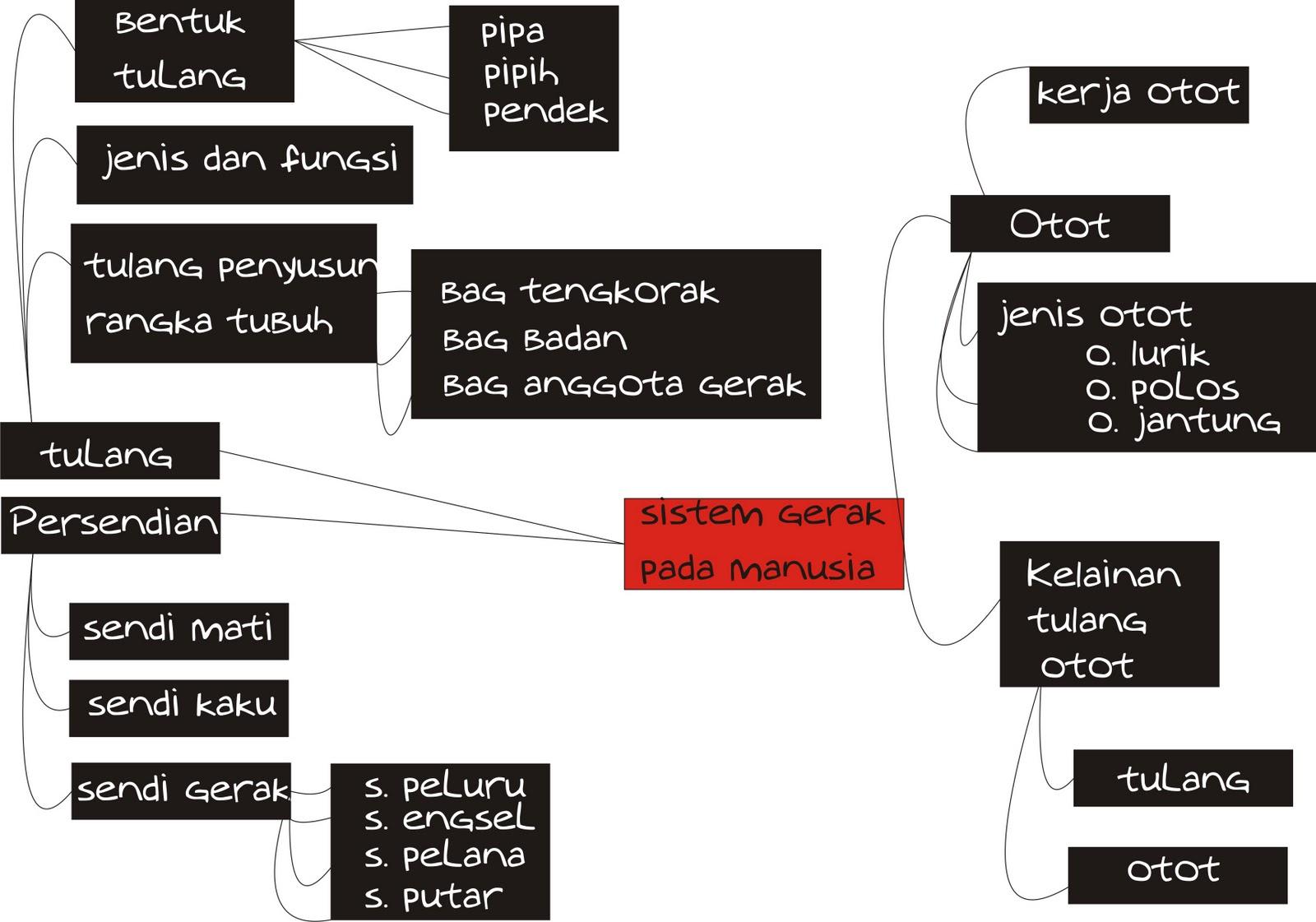 Materi Gerak Pada Tumbuhan Kuis Biologi Smp Kelas Viii Materi Macam Macam Gerak Sistem Gerak Pada Manusia Peta Konsep