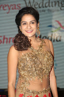 Jenny in brown transparent sleeveless anarkali dress at Shamanthakamani pre release function ~  Exclusive 034.JPG