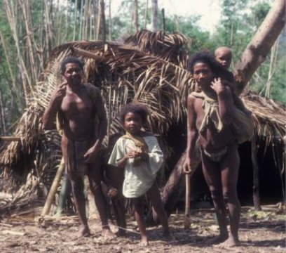 Study finds modern hunter-gatherers relocate to maximize foraging efficiency