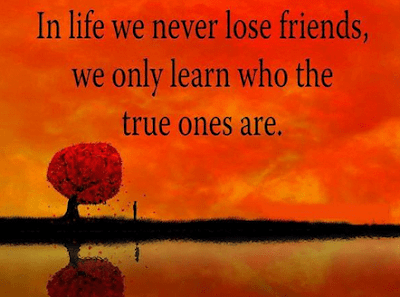heart touching friendship quotes with images