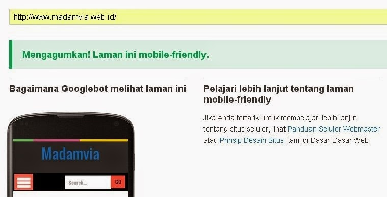 Mobilegeddon, Optimalkan Blog Untuk Mobile Friendly