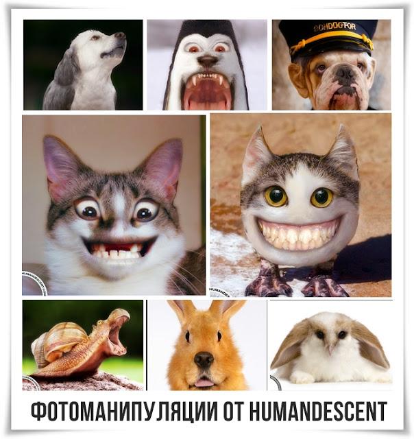 Фотоманипуляции от HumanDescent.