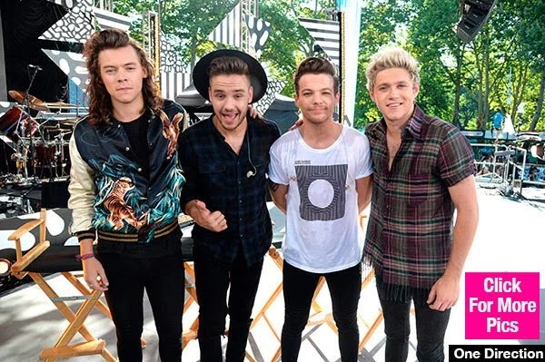 Niall Horan Confirms One Direction Reunion 'Will Definitely Happen'