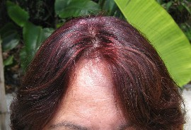 After Lying Clairol Beautiful Collection Hair Color
