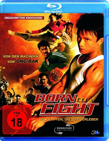 Born To Fight 2004 Dual Audio Hindi Bluray Movie Download