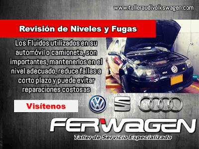 Revision de Niveles AUDI Volkswagen SEAT