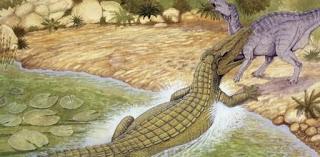 buaya Sarcosuchus terbesar dunia