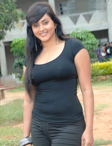Tamil%2BActress%2BNamitha%2BHot%2BWallpapers7