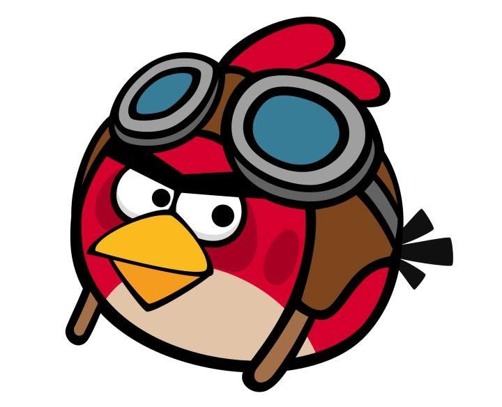Bila Gambar Bersuara Gambar Burung Sebenar Angry Bird