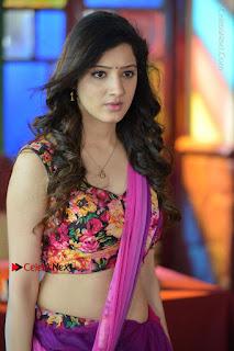 Actress Richa Panai Stills in Half Saree at Rakshaka Bhatudu Sets  0002.JPG