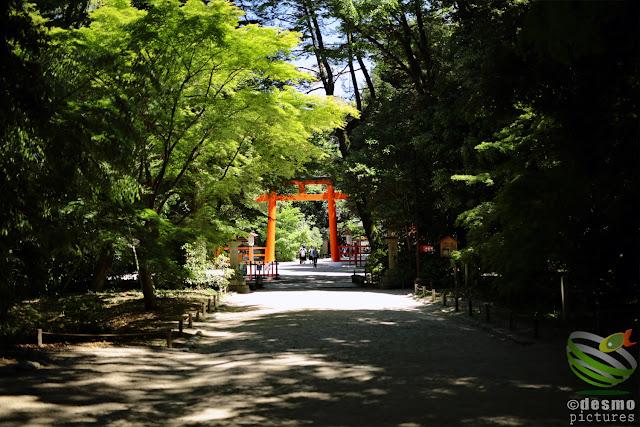 京都~下鴨神社