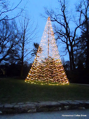 Christmas Lights  - A Longwood Gardens PhotoJournal - Part Two on Homeschool Coffee Break @ kympossibleblog.blogspot.com