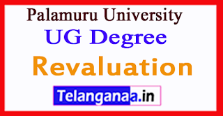 Palamuru University UG Degree  2017 Revaluation Results