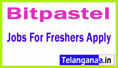 Bitpastel Recruitment Jobs For Freshers Apply