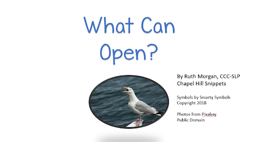 """What Can Open?""--Free Printable Book with Icons"
