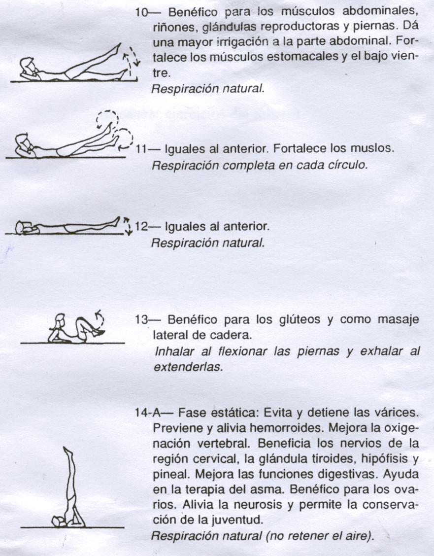 TRIKONASANA | Mercedes Beatriz Azcarate. Profesora de Yoga