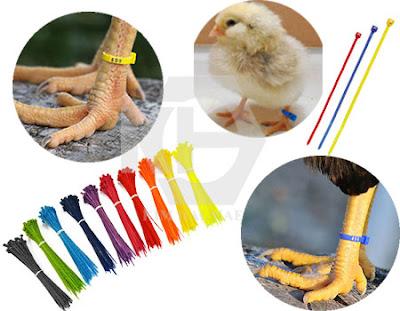 dây thít nhựa nhiều màu, phân loại hàng hóa