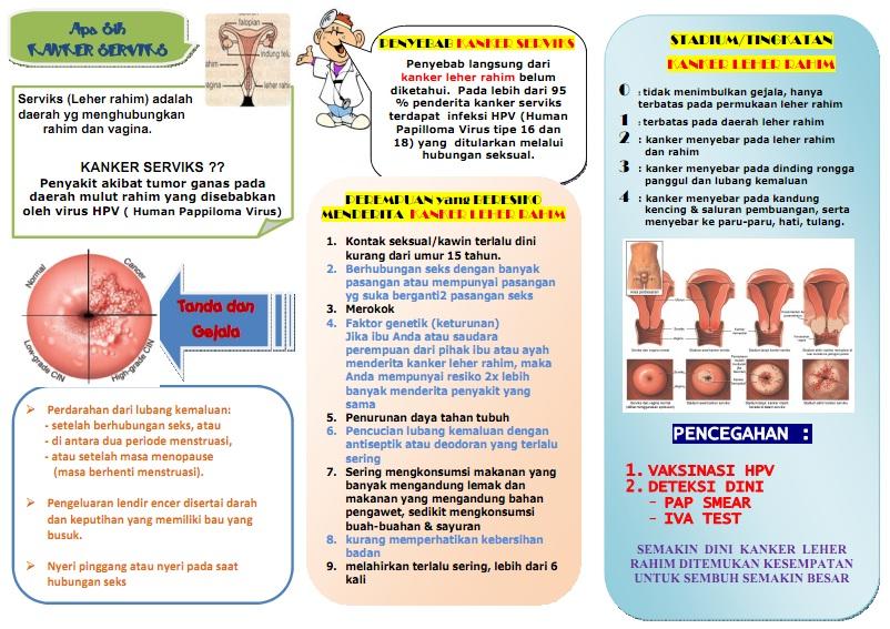 Kanker Serviks Ciri Ciri Penyebab Dan Pencegahan Kanker ...