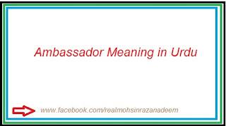 Ambassador meaning in Urdu