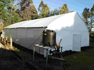 Metallic greenhouse 8 meters by 156 meters in kinya