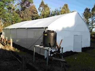 Metallic greenhouse kirinyaga ,greenhouse, green house farming in Kenya, greenhouse farming in Kenya, green house, green houses in Kenya,