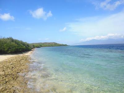 Bagaimana cara menuju pulau Menjangan