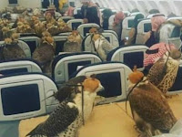 Foto-foto Aneh Penumpang Pesawat Terbang Bikin Kita Cengar-cengir Sendiri, Bagaimana Bisa Ya...