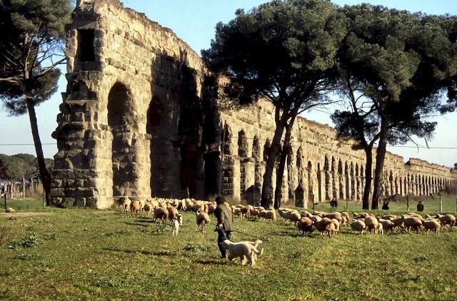 Roma e Lazio x te
