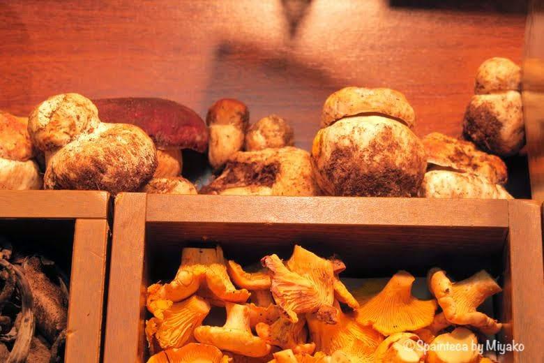 Boletus スペインの高級食材ボレトゥスきのこ