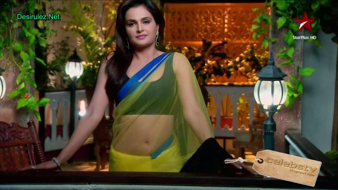 Monica Bedi Full Transparent Saree Showing Blouse And -5430