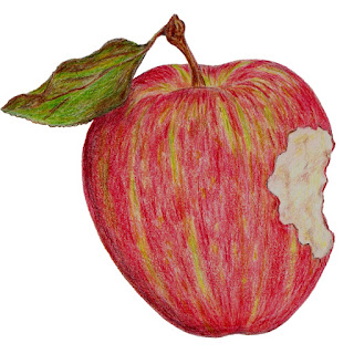 Colored pencil illustration of an apple with a bite taken out of it by Eve Fox, copyright 2014.