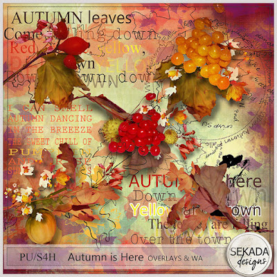 https://www.digitalscrapbookingstudio.com/personal-use/element-packs/autumn-is-here-clusters/