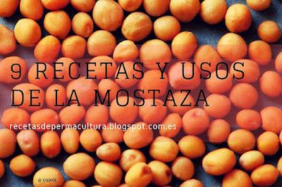 Recetas Medicinales con Mostaza