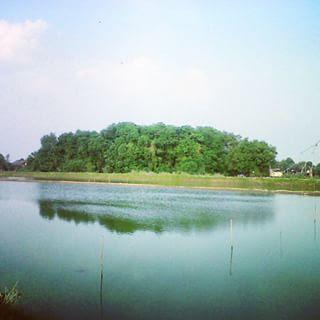 Pulau Seprapat Juwana
