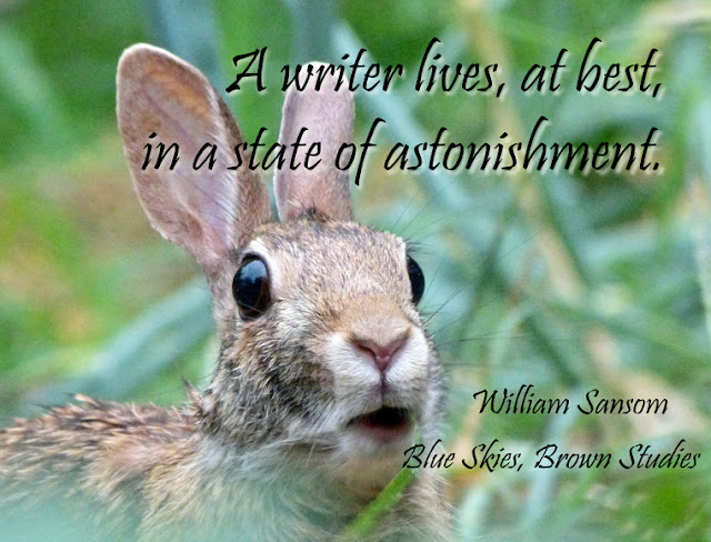 A writer lives, at best, in a state of astonishment.
