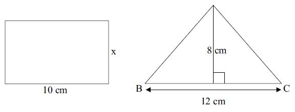 Questão 10 - Área e perímetro