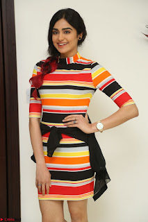 Adha Sharma in a Cute Colorful Jumpsuit Styled By Manasi Aggarwal Promoting movie Commando 2 (183).JPG