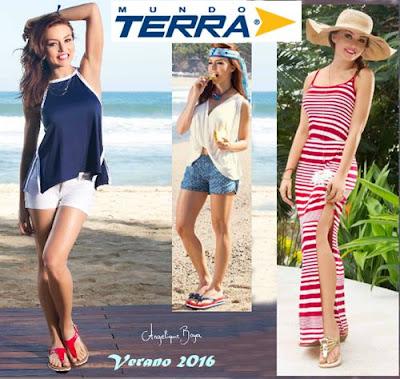 terra verano 2016