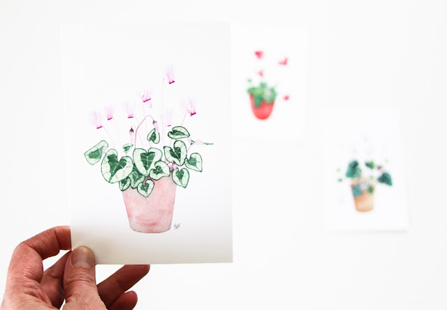 watercolor archival botanical prints